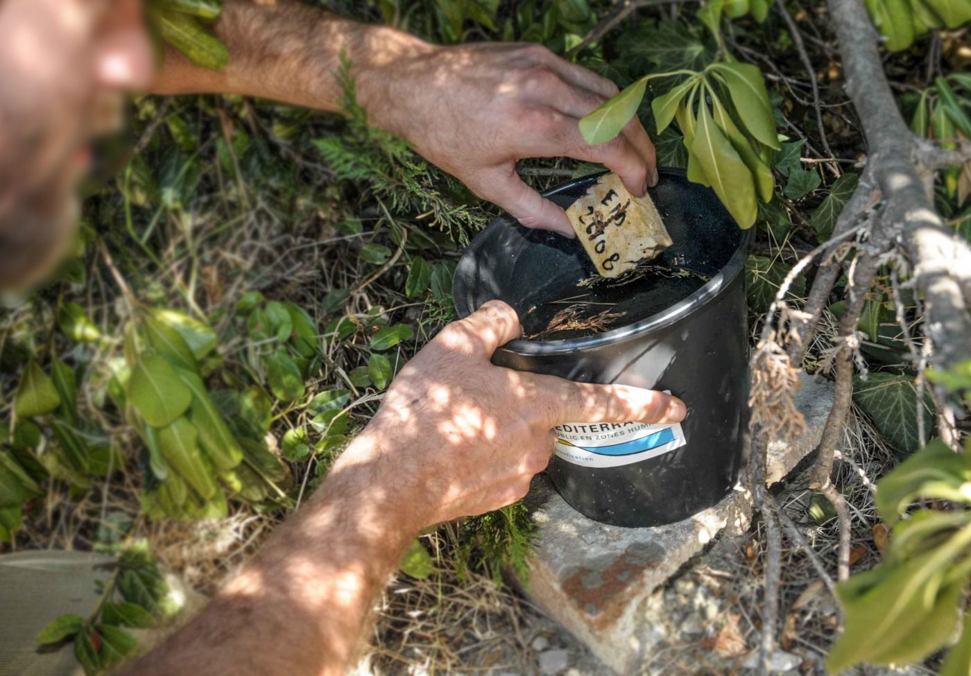 R pulsifs les produits vraiment efficaces dis leur - Frederic le moustique ...