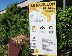 Le pavillon du miel et les abeilles