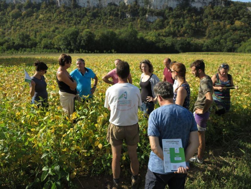 Agriculture : L'innovation (aussi) est dans le pré !