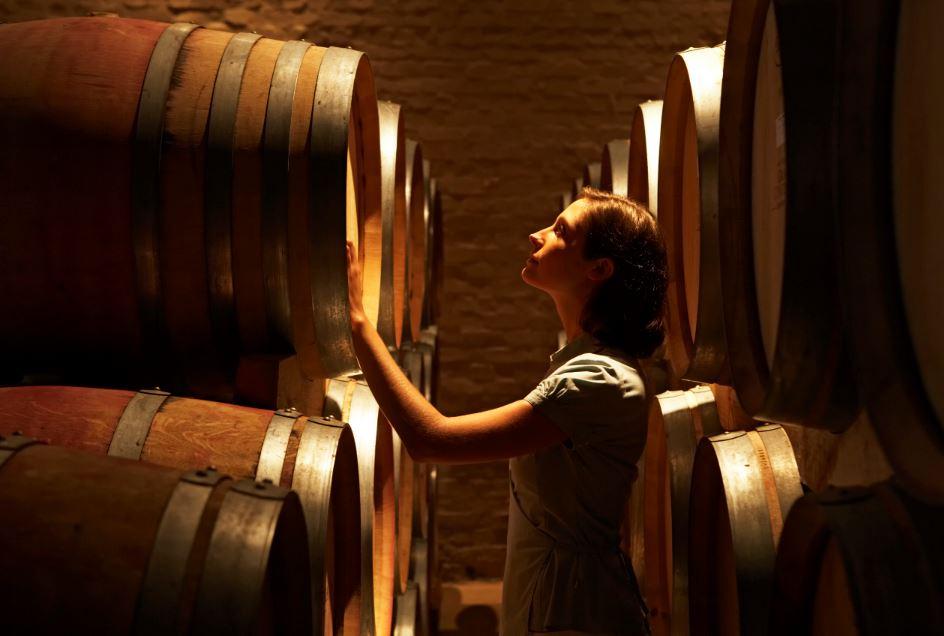 Occitanie : Bio et oenotourisme, pépites de la filière viticole