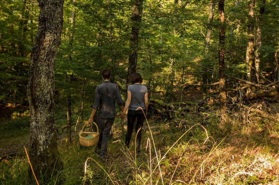 A la rencontre des professionnels de la forêt