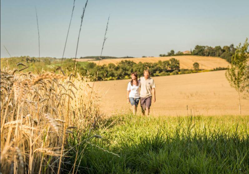 Ruralité : Selon une étude, 92% des français expriment un «désir de campagne»