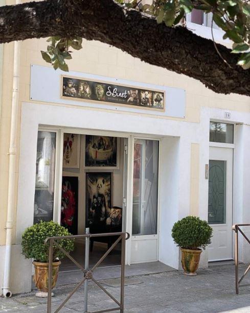 Arts : À Aigues-Mortes, bienvenue dans la dernière galerie avant le confinement