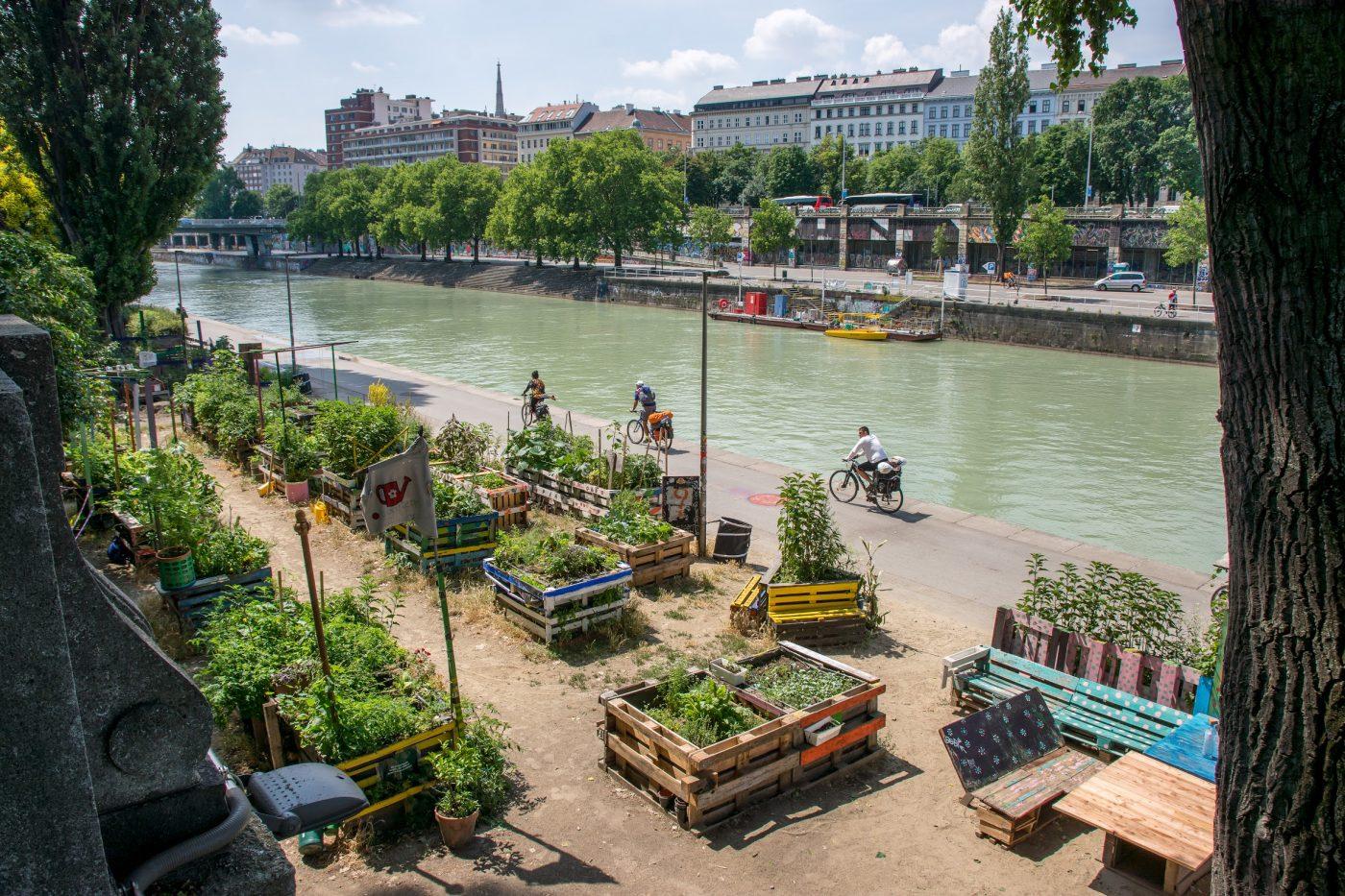 Environnement : La Région Occitanie à la pointe du combat climatique - Dis-leur !